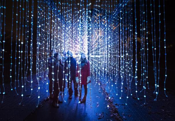 Illuminated Christmas Lights Trail